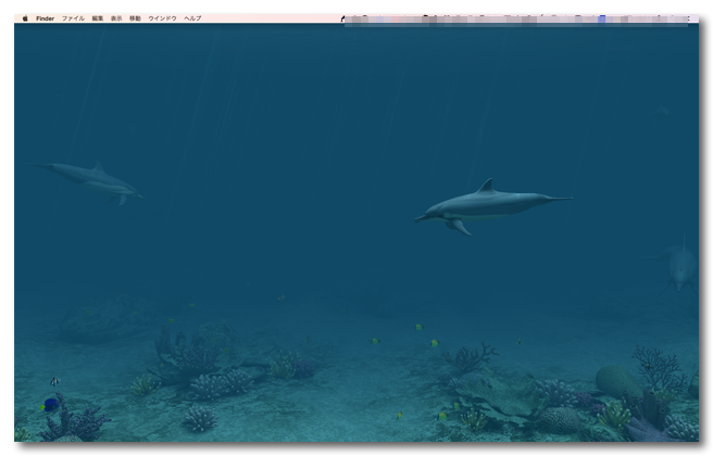 Dolphins 3D マック