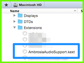 Ambrosia Audio Support インストール場所